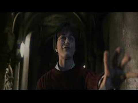 :*:Tom Riddle/Voldemort and Harry-What have you done:*: