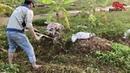 Hướng dẫn làm cỏ chuyên nghiệp bằng Máy Xới Đất Kachita JP1WG4
