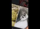 Видео от COUTURE BOOK