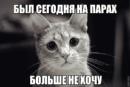 Марьин Артём | Санкт-Петербург | 37