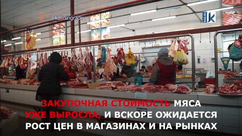 «Скоро догонит говядину» эксперты прогнозируют подорожание свинины в Калининградской области