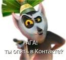 Фотоальбом Михаила Павлюка