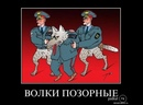 Волки позорные!
