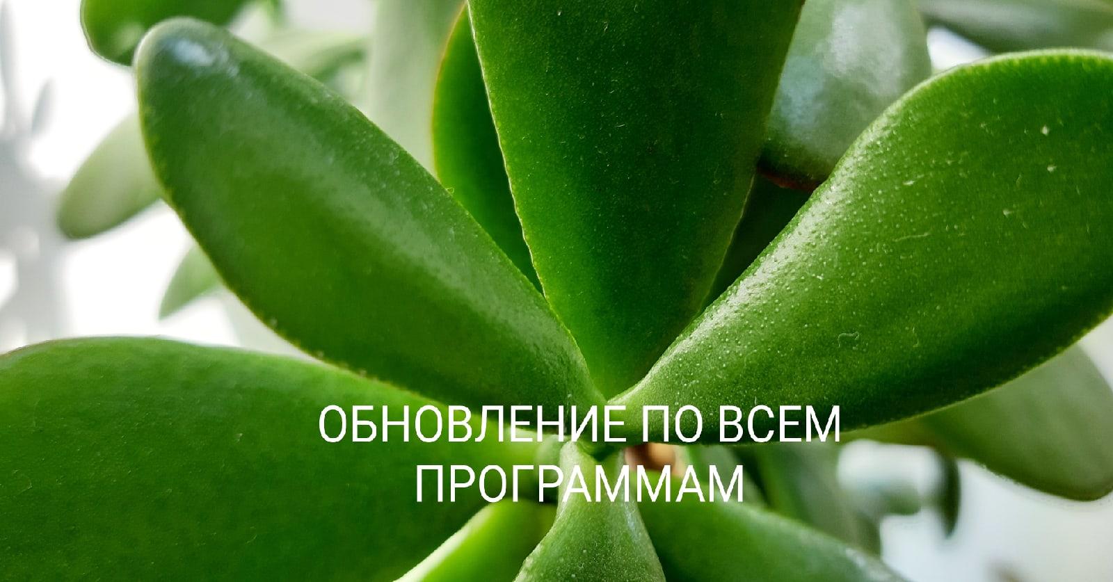 любовнаямагия - Программные свечи от Елены Руденко. - Страница 17 CpnULW3MQTM