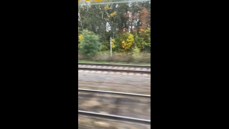 Видео от Татьяны Шишовой