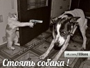 Личный фотоальбом Кольки Бойчука
