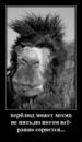 Личный фотоальбом Куаныш Асена