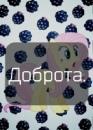 Личный фотоальбом Алины Зайцевой