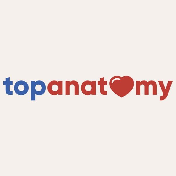 Topanatomy - Школа медицины   паблик
