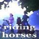Windenergy - Riding Horses