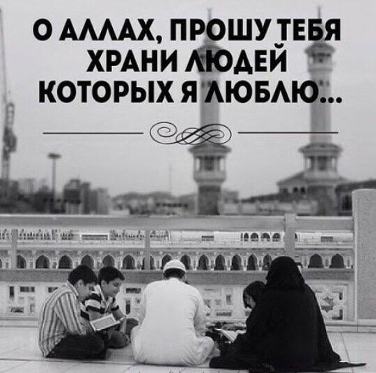 Arab Arabov, Махачкала, Россия
