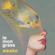 Lemongrass - Awake