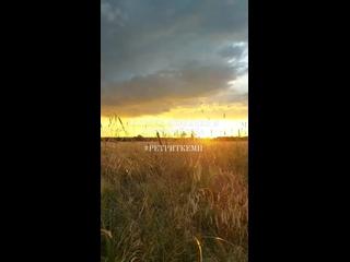 Видео от Михаила Фаермана