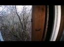 Влад Резнов Заброшенная станция призрак в Чернобыле. Нашел бункер и дом самосёлов в Зоне Отчуждения