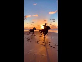 Video by Svetlana Leonova