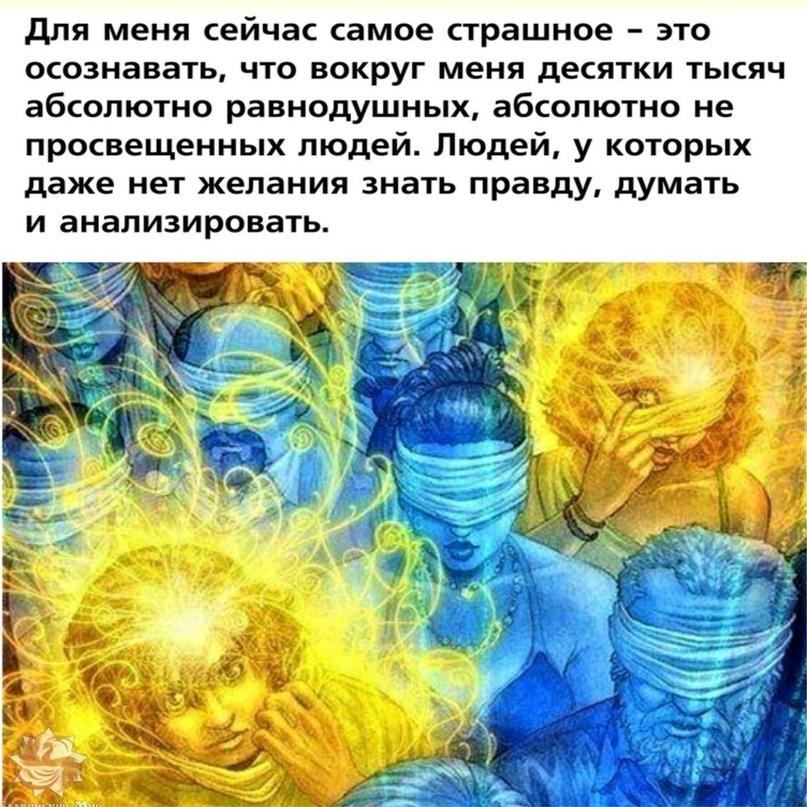 🖥 Население настолько зомбировано, что не хочет думать и анализировать. Проще ве...