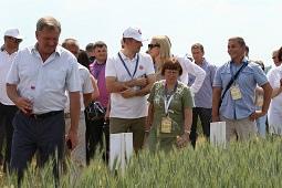 Среднерусский зерновой форум заезжал в Липецкий район