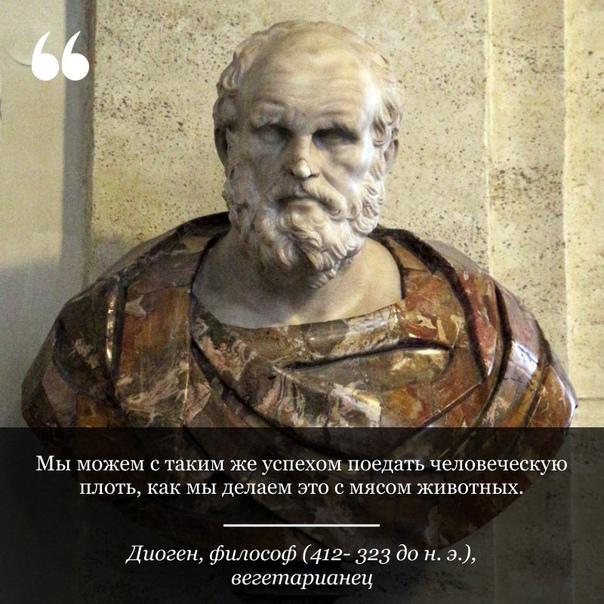 «Мы можем с таким же успехом поедать человеческую пл....