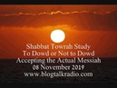 Shabbat Towrah Study to Dowd or Not to Dowd 08 November 2019