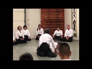 Aikido_Karate Martial arts body