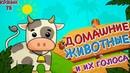 Развивающий мультик для детей.Учим животных.Как говорят животные, звуки, стишки. Домашние животные