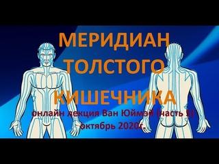 5. Меридиан толстого кишечника.