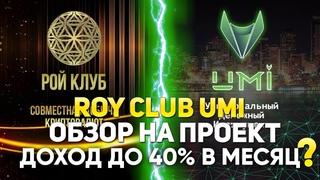 Рой клуб и UMI - что это? Вся правда о Рой Клубе и монете UMI!!!