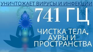 Частота 741 Гц 5-я чакра: чистит тело от инфекций, ауру и пространство от воздействий и сущностей