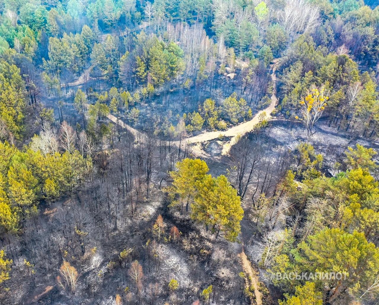 А вот как выглядит место вчерашнего пожара в районе Задворцев с высоты