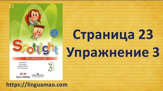 Spotlight 3 класс Workbook страница 23 номер 3 ГДЗ решебник
