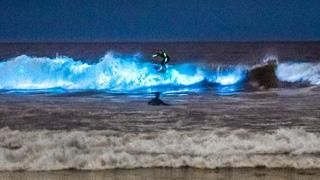 Unbelievable Bioluminescent Beach, California