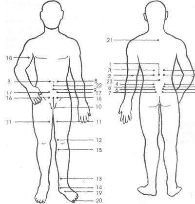 точки акупунктуры при лечении простатита