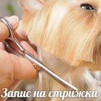 Личная фотография Оксаны Марущак