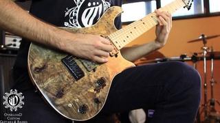 Overload Guitars & Basses - custom REA 7 - Animals as Leader :CAFO cover part 1