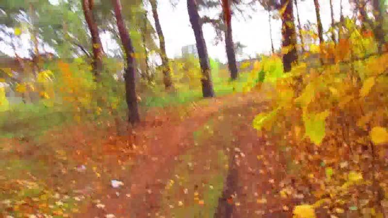 Осенью где то в лесу это было Сова открывай дверь медведь пришел