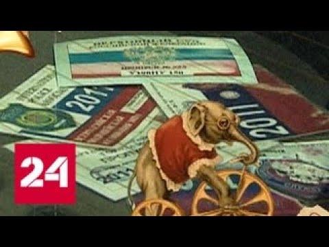 Расследование Эдуарда Петрова Клоуны на дорогах 2 Россия 24