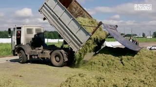 Теория и практика консервирования трав для получения грубых кормов
