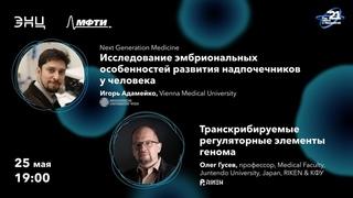 Next Generation Medicine: Исследование эмбриональных особенностей развития надпочечников у человека
