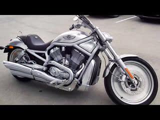 Harley davidson v rod vrsca 100th anniversary edition (2003)
