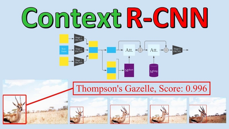 Context R CNN Long Term Temporal Context for Per Camera Object Detection Paper Explained